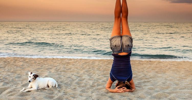 Una de las premisas principales cuando llevas a tu perro a la playa es el respeto a los demás (Istock)