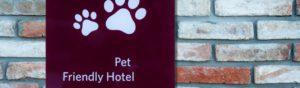 Seguro que tu mascota hace amigos en el hotel (Istock)