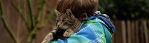 Los gatos son mas cariñosos de lo que crees (Pixabay)