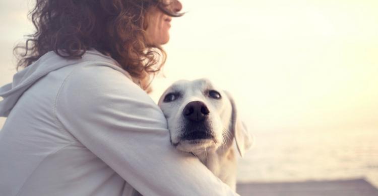 Preocuparse por la mascota indica que se es un buen dueño (Foto: iStock)