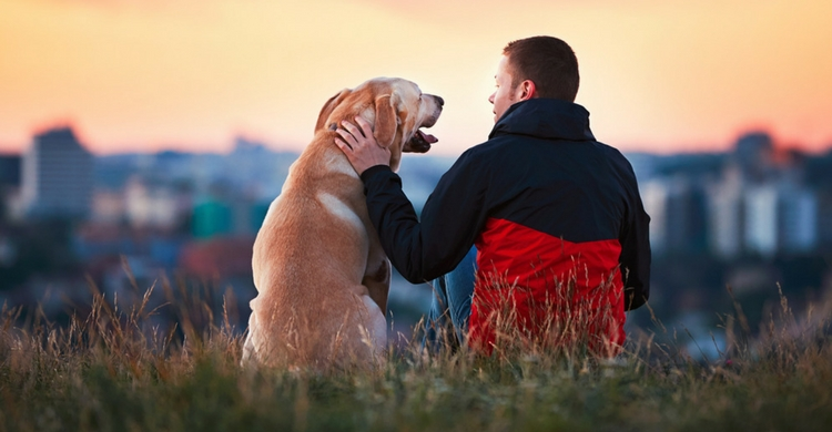 Para tu mascota tú lo eres todo (Foto: iStock)