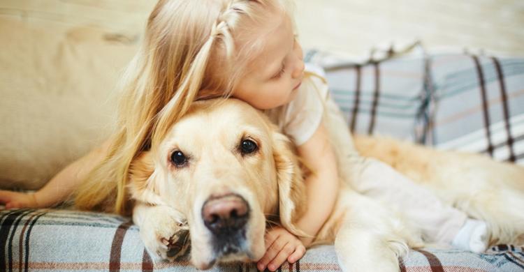 Atención a la higiene de tu mascota si vas a dormir con ella (Istock)