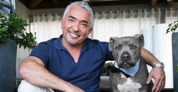 Cesar Millán con uno de los perros a los que ha adriestrado (Vimeo)