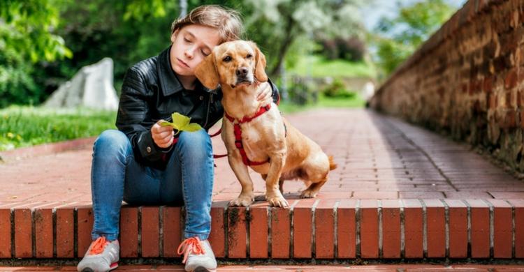 Tu perro te necesitará más que nunca (Istock)