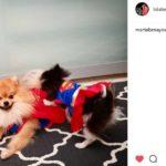 Superhéroes y monstruos (Instagram @lolabenayas)