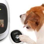 Aparato para comunicarte con tu mascota de PetChatz