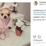 Princesa (Instagram @martabenayas)