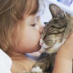 A pesar de su carácter, los gatos pueden hacer muy buenas migas con niños (iStock)