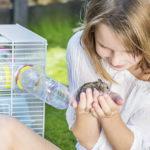 Todos los niños quieren un hamster (iStock)