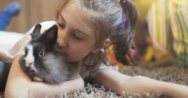 Las mascotas hacen que sus dueños vivan en una mayor tranquilidad pese a vivir en una gran ciudad (Foto: iStock)