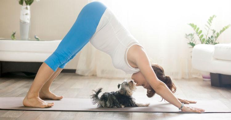 Relajarte tú y perro, el objetivo principal del 'dogga' (Foto: iStock)