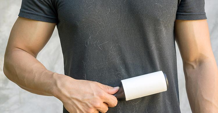 Los rodillos para la ropa también valen para el sofá (iStock)