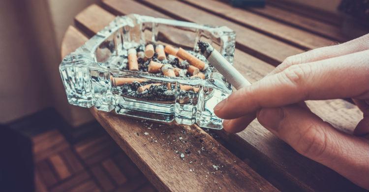 Las mascotas también son fumadoras pasivas (Foto: iStock)