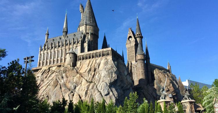 Las mascotas tienen un gran peso en la historia de Harry Potter (Foto: iStock)