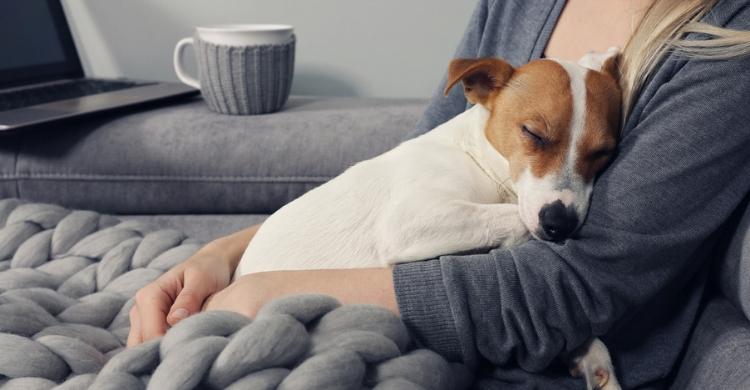 Un buen descanso es imprescindible (Istock)