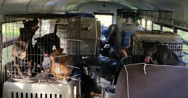 El camión con todo lo preparado para llevar a cabo los rescates (Foto: Facebook)