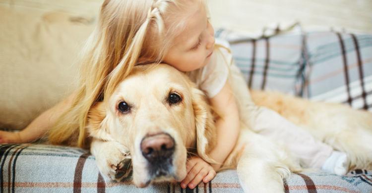 Los animales favorecen el desarrollo cognitivo del niño (Foto: iStock)