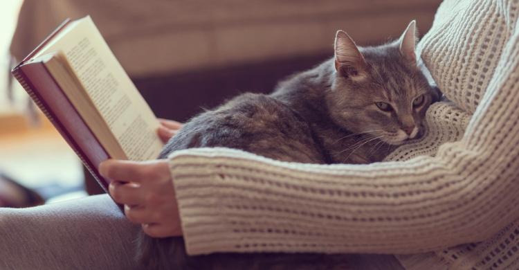 Si lees con tu mascota cerca, disfrutaréis de una experiencia que os unirá más todavía (Istock)