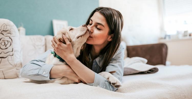 Si es el perro ideal para ti te darás cuenta (Istock)