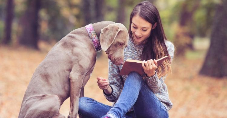 Aprenderás y te divertirás leyendo (Istock)