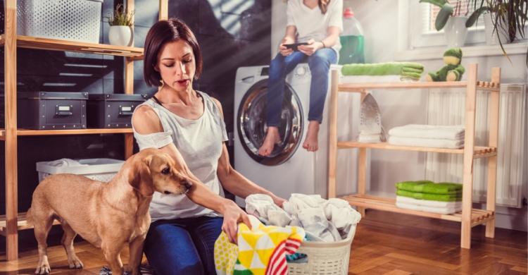 Toda higiene es poca cuando se tiene un animal en casa (Istock)